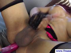Shemale tgirl ass toyed and cock sucked